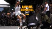 Animais do Downhill 2017! Feminino! DHS e Longboard!