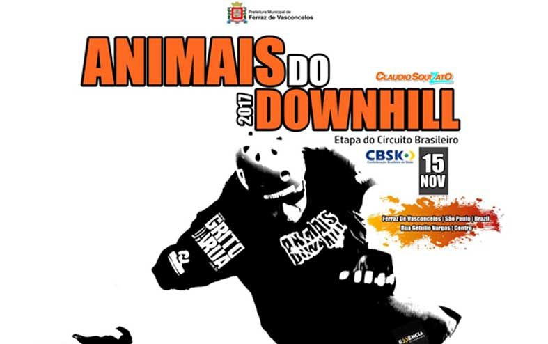 Animais do Downhill 2017